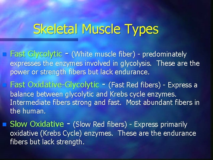 Skeletal Muscle Types n Fast Glycolytic - (White muscle fiber) - predominately expresses the