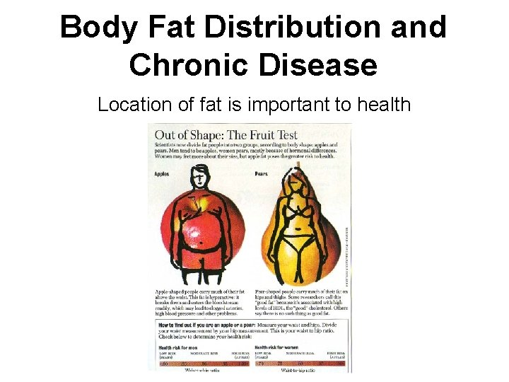 Body Fat Distribution and Chronic Disease Location of fat is important to health