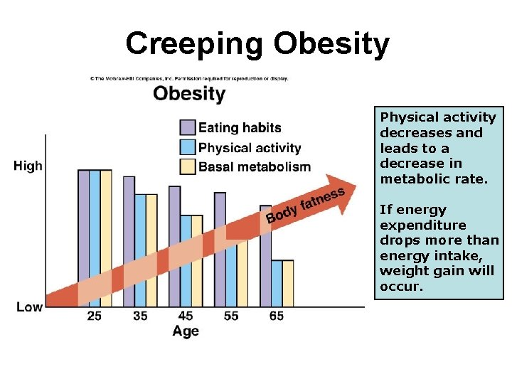 Creeping Obesity Physical activity decreases and leads to a decrease in metabolic rate. If