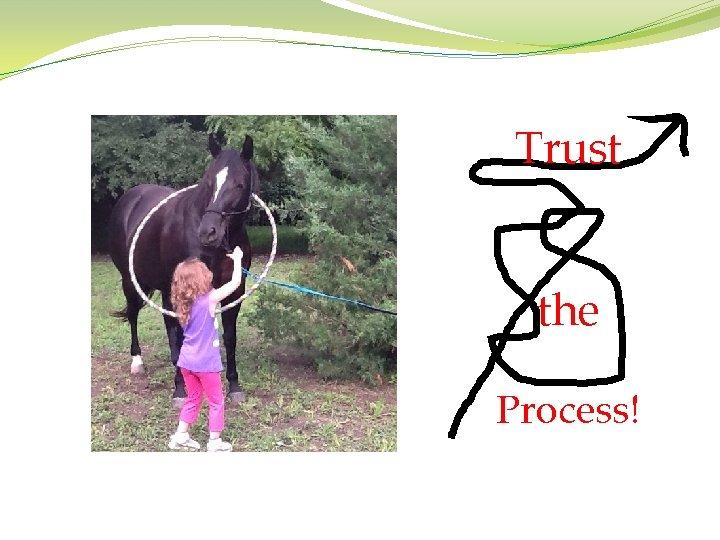 Trust the Process!