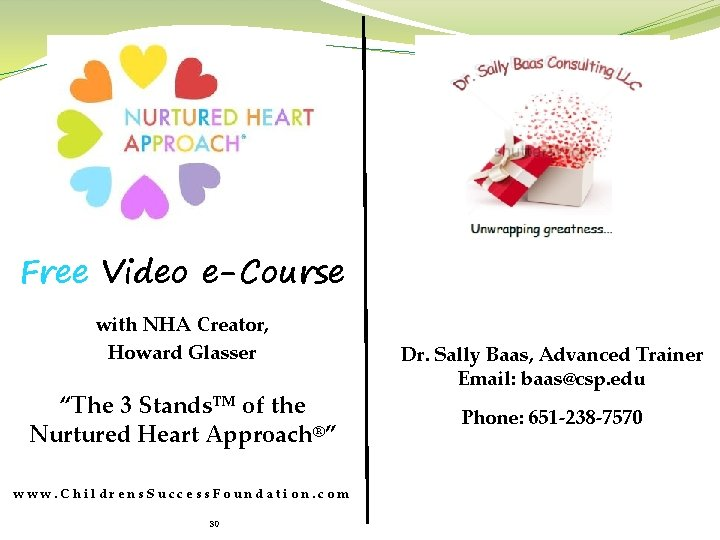"""Free Video e-Course with NHA Creator, Howard Glasser """"The 3 Stands™ of the Nurtured"""