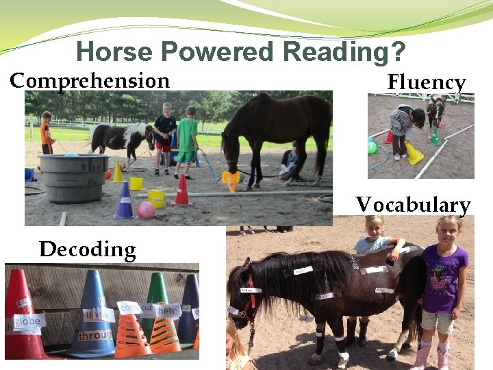 Horse Powered Reading? Comprehension Fluency Vocabulary Decoding