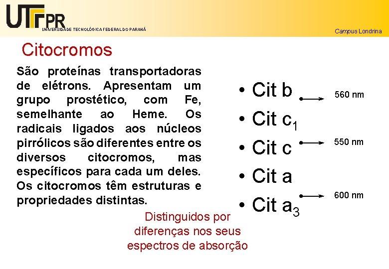 UNIVERSIDADE TECNOLÓGICA FEDERAL DO PARANÁ Campus Londrina Citocromos São proteínas transportadoras de elétrons. Apresentam