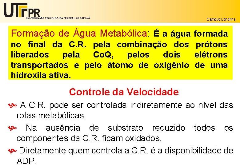UNIVERSIDADE TECNOLÓGICA FEDERAL DO PARANÁ Campus Londrina Formação de Água Metabólica: É a água