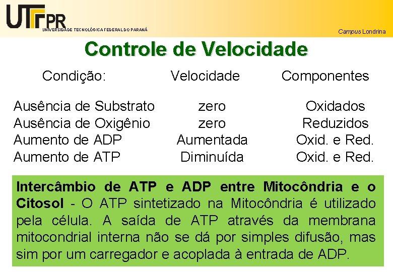 UNIVERSIDADE TECNOLÓGICA FEDERAL DO PARANÁ Campus Londrina Controle de Velocidade Condição: Ausência de Substrato