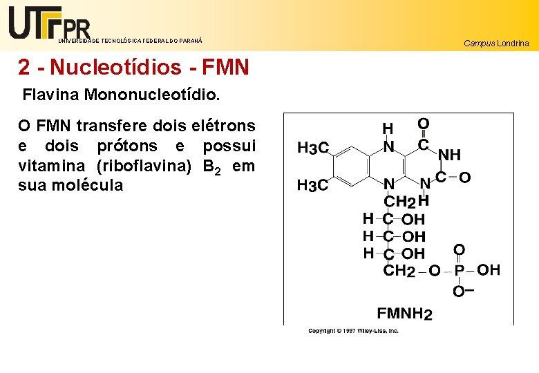 UNIVERSIDADE TECNOLÓGICA FEDERAL DO PARANÁ 2 - Nucleotídios - FMN Flavina Mononucleotídio. O FMN