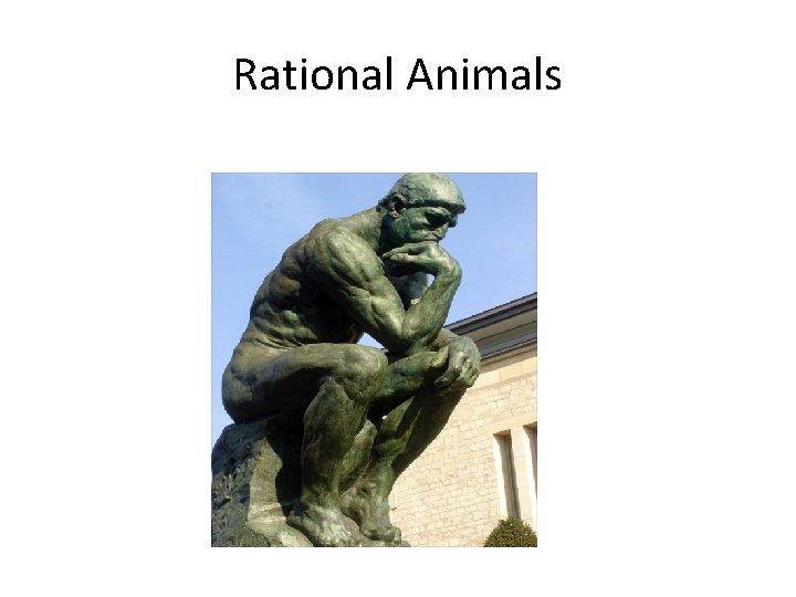 Rational Animals