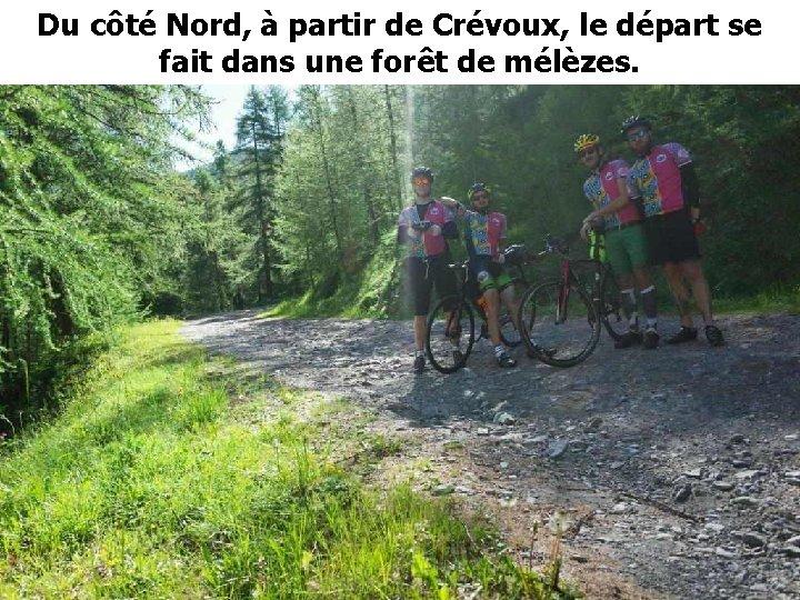 Du côté Nord, à partir de Crévoux, le départ se fait dans une forêt