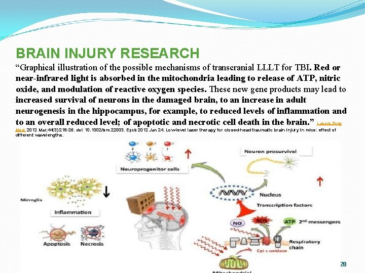 """BRAIN INJURY RESEARCH """"Graphical illustration of the possible mechanisms of transcranial LLLT for TBI."""