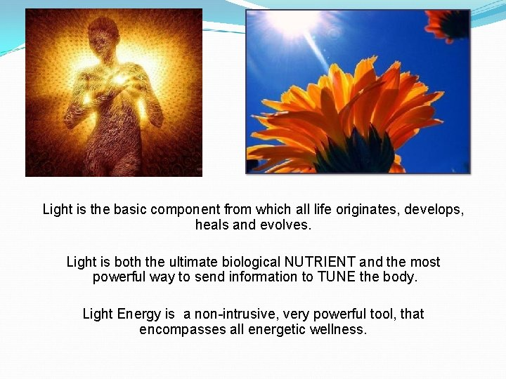 Light is the basic component from which all life originates, develops, heals and evolves.