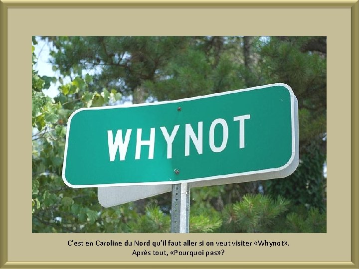 C'est en Caroline du Nord qu'il faut aller si on veut visiter «Whynot» .