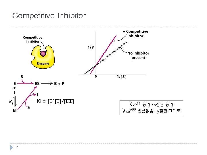 Competitive Inhibitor Ki = [E][I]/[EI] KMAPP 증가 : x절편 증가 Vmax. APP 변함없음 :