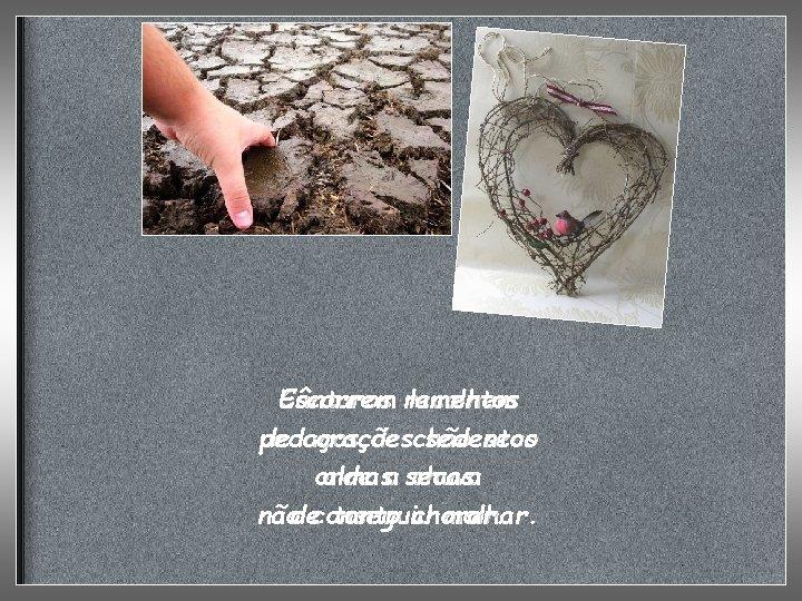 Escorrem Cântaros recolhem lamentos pedaços de corações de chão sedentos seco onde almasa secas