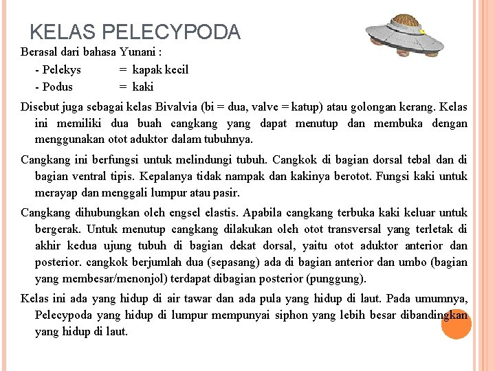 KELAS PELECYPODA Berasal dari bahasa Yunani : - Pelekys = kapak kecil - Podus