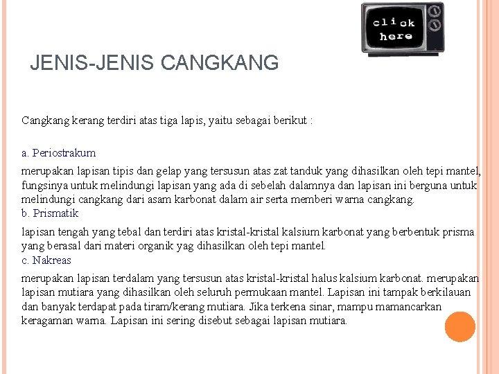 JENIS-JENIS CANGKANG Cangkang kerang terdiri atas tiga lapis, yaitu sebagai berikut : a. Periostrakum