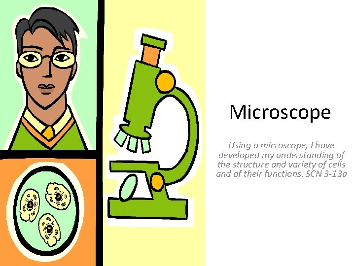 Microscope Using a microscope, I have developed my understanding of the structure and variety