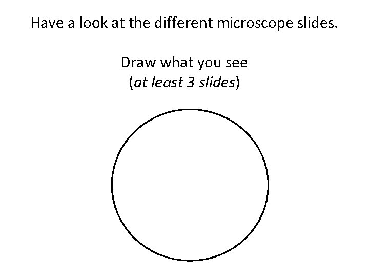Have a look at the different microscope slides. Draw what you see (at least
