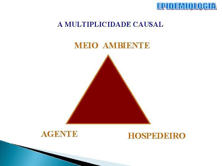 A MULTIPLICIDADE CAUSAL MEIO AMBIENTE AGENTE HOSPEDEIRO