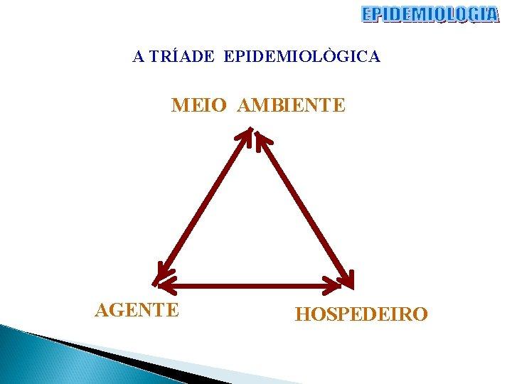 A TRÍADE EPIDEMIOLÒGICA MEIO AMBIENTE AGENTE HOSPEDEIRO
