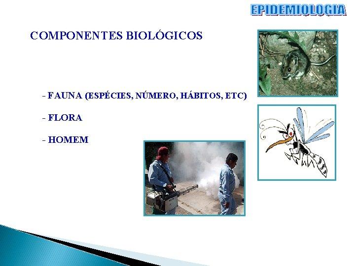 COMPONENTES BIOLÓGICOS - FAUNA (ESPÉCIES, NÚMERO, HÁBITOS, ETC) - FLORA - HOMEM