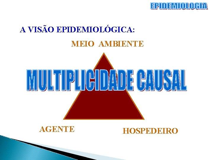 A VISÃO EPIDEMIOLÓGICA: MEIO AMBIENTE AGENTE HOSPEDEIRO