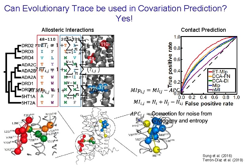Can Evolutionary Trace be used in Covariation Prediction? Yes! Contact Prediction Allosteric Interactions Sung