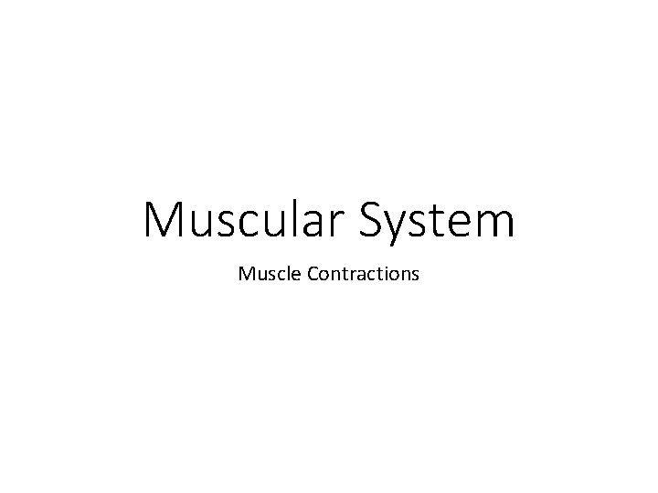 Muscular System Muscle Contractions