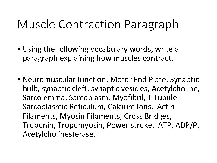 Muscle Contraction Paragraph • Using the following vocabulary words, write a paragraph explaining how