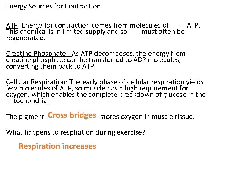 Energy Sources for Contraction ATP: Energy for contraction comes from molecules of ATP. This