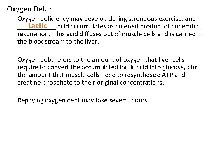 Oxygen Debt: Oxygen deficiency may develop during strenuous exercise, and Lactic acid accumulates as