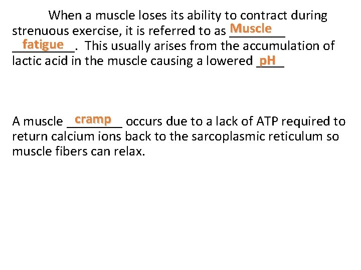 When a muscle loses its ability to contract during Muscle strenuous exercise, it is
