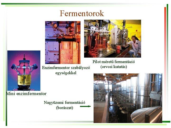 Fermentorok Pilot méretű fermentáció (orvosi kutatás) Enzimfermentor szabályozó egységekkel Mini enzimfermentor Nagyüzemi fermentáció (borászat)