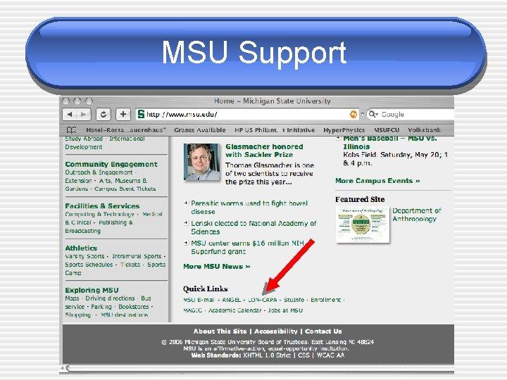 MSU Support