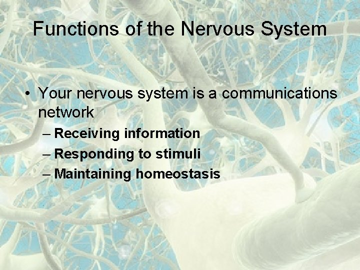 Functions of the Nervous System • Your nervous system is a communications network –