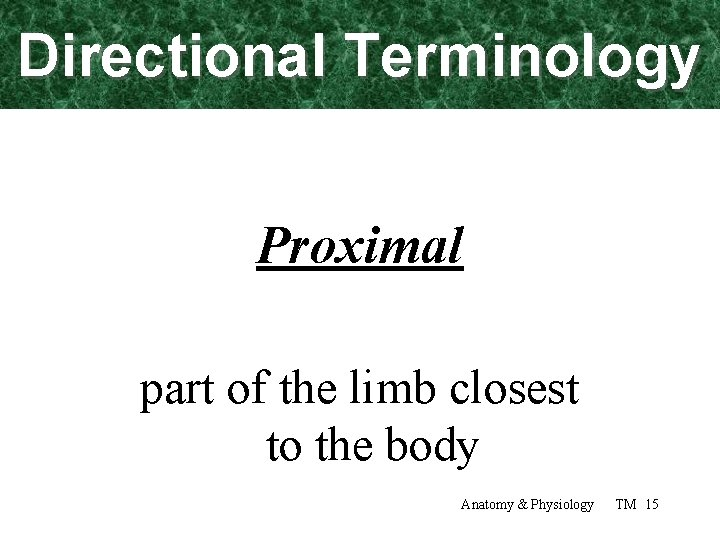 Directional Terminology Proximal part of the limb closest to the body Anatomy & Physiology