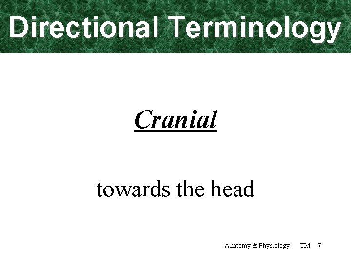 Directional Terminology Cranial towards the head Anatomy & Physiology TM 7