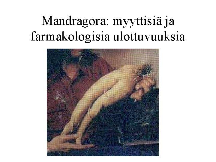 Mandragora: myyttisiä ja farmakologisia ulottuvuuksia