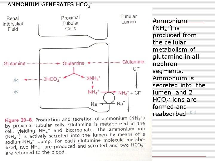 AMMONIUM GENERATES HCO 3 - * * Ammonium (NH 4+) is produced from the