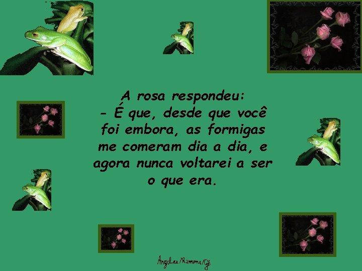 A rosa respondeu: - É que, desde que você foi embora, as formigas me