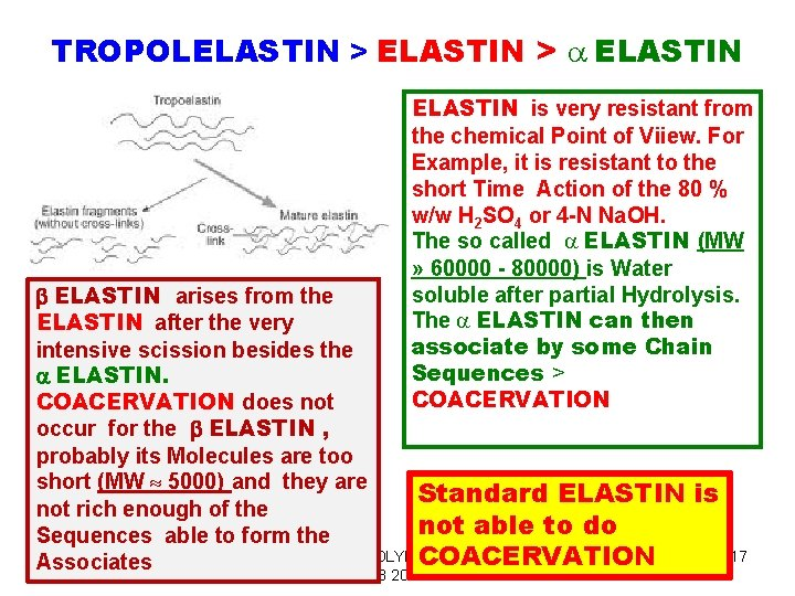 TROPOLELASTIN > a ELASTIN is very resistant from the chemical Point of Viiew. For