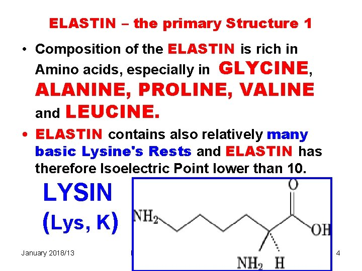 ELASTIN – the primary Structure 1 • Composition of the ELASTIN is rich in