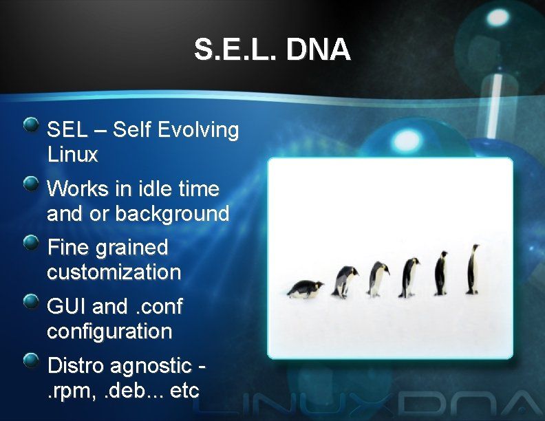 S. E. L. DNA SEL – Self Evolving Linux Works in idle time and