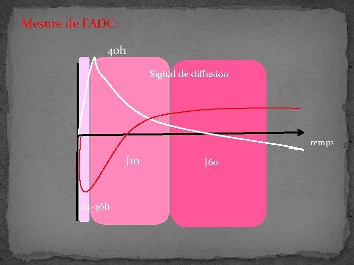 Mesure de l'ADC: 40 h Signal de diffusion temps J 10 24 -36 h