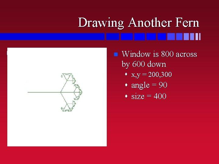 Drawing Another Fern n half way down 1/4 way across Window is 800 across