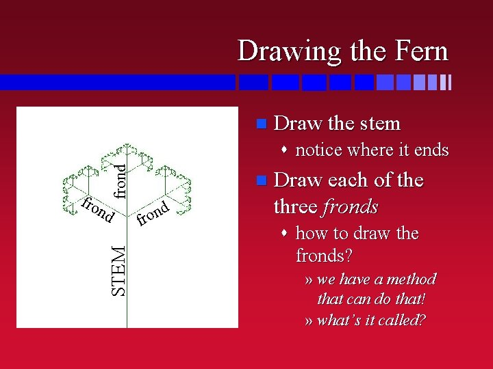 Drawing the Fern n Draw the stem fro n frond s notice where it