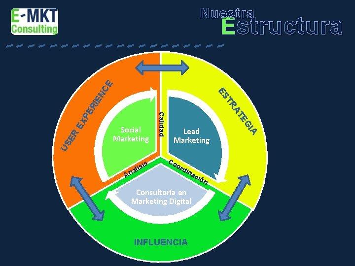 Nuestra Estructura IE N US ER EX P ER A l ná Lead Marketing