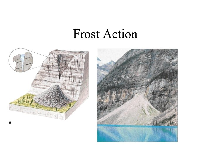Frost Action