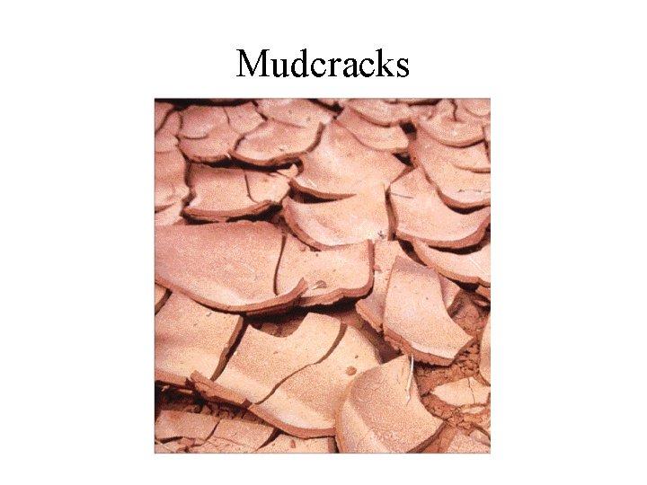 Mudcracks