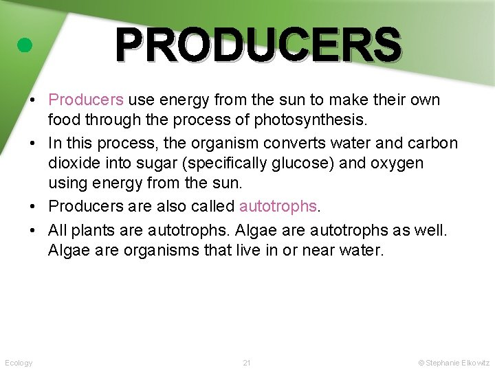 PRODUCERS • Producers use energy from the sun to make their own food through