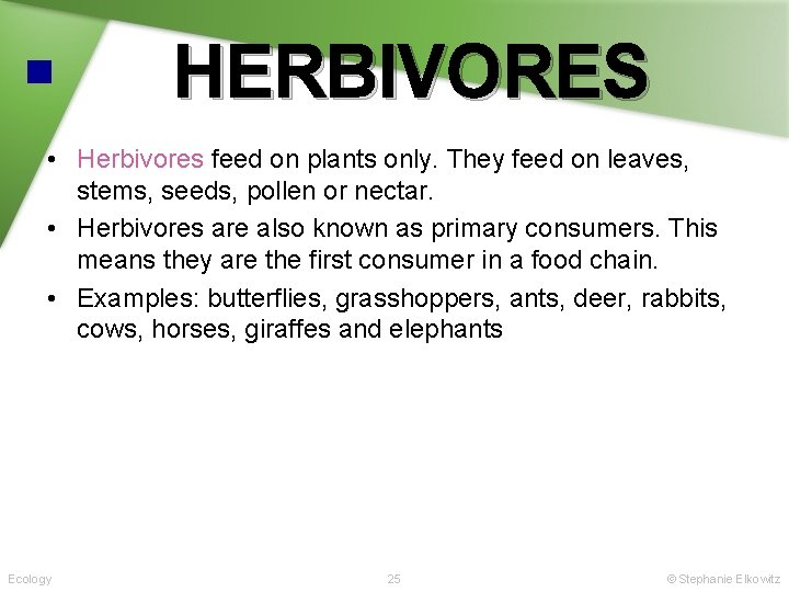 HERBIVORES • Herbivores feed on plants only. They feed on leaves, stems, seeds, pollen